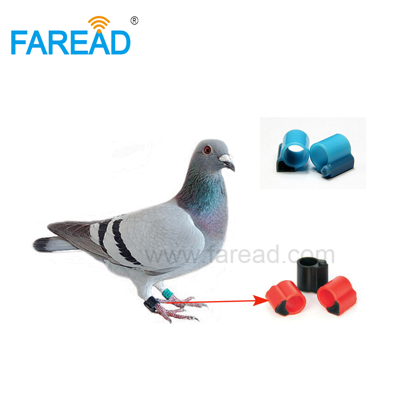 X100pcs Hitag-S256 134.2KHz FDX-B ABS RFID LF Tag Bird Pigeon Racing Electronic Foot Ring Duck For Animal Chicken