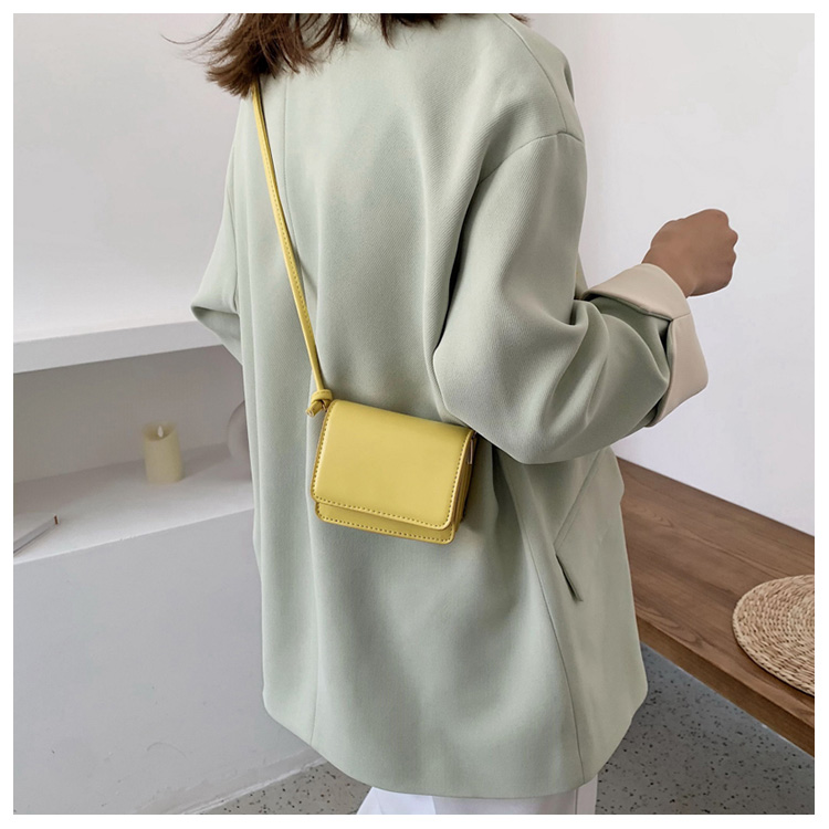 Five Colors Of SweetsRetro Mini Bags For 2020 Small Chain Handbag Small Bag PU Leather Hand Bag Ladies Shopping Bags (15)