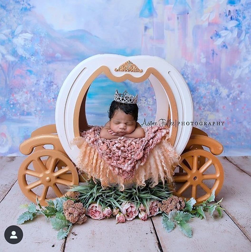 Newborn Photography Props Baby Iron Princess Cinderella Carriage Prop Posing Pumpkin Car Poser Fotografia Photo Props