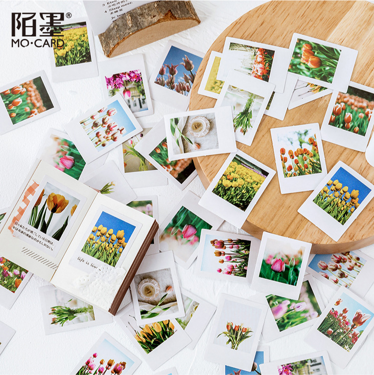 46 Pcs/set Boxed StickersTulip Flower Bullet Journal Stickers Cute Stickers Scrapbooking Diary Album Decoration Stickers