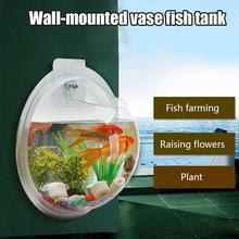 Acrylic Wall Hanging Fish Tank Bowl Aquarium Vase Plant Deco