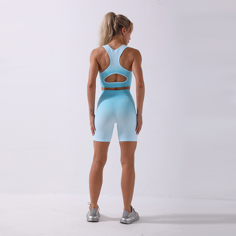 2/3Pcs Gradient Fitness Yoga Suit Sports Set Seamless Sportwear Women Bra+Shorts+Leggings High Waist Workout Outfit Gymwear New 5
