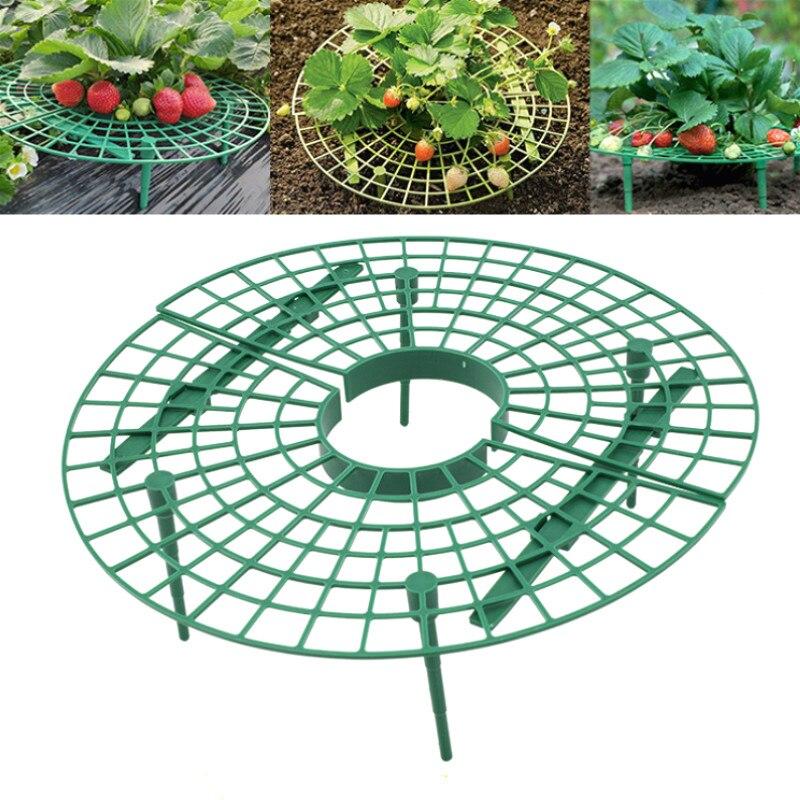 Strawberry Stand Planting Rack Plant Support Rack Plant Tray Fruit Climbing Vine Props Flower Pillar Gardening Bracket