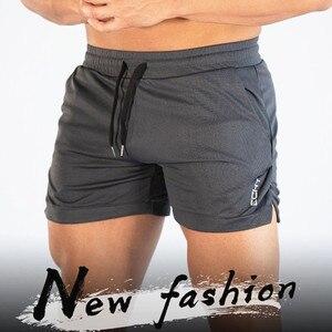 Image 2 - 2019 חדש קיץ זכר כושר פיתוח גוף מותג מכנסיים קצרים רשת לנשימה מהיר ייבוש אופנה מזדמן רצים 4XL shorts ספורט