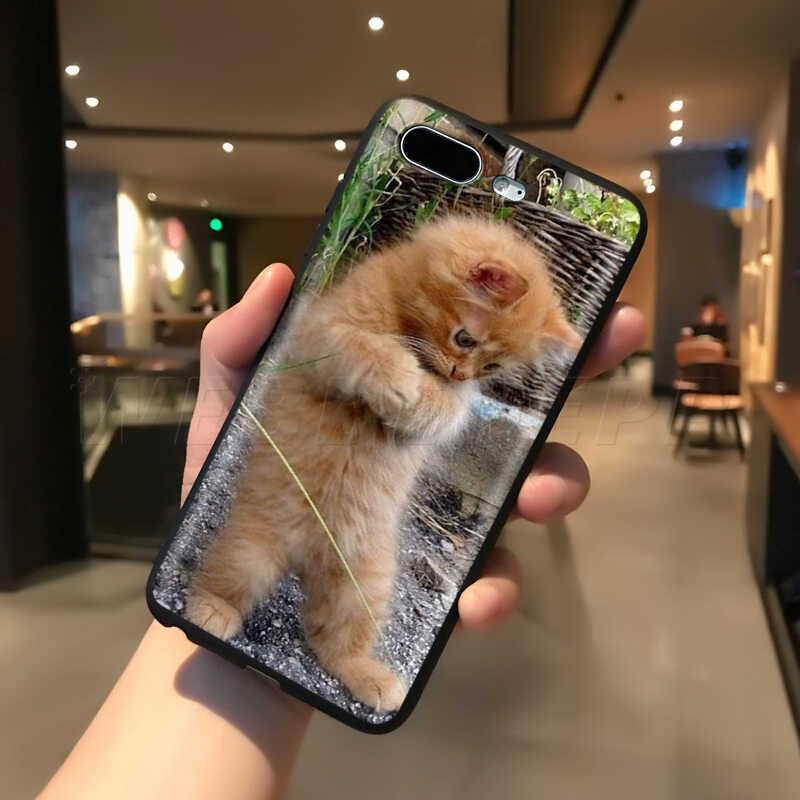 Webbedepp مضحك القط القط الحال بالنسبة لابل آيفون 11 برو XS ماكس XR X 8 7 6 6S زائد 5 5s SE