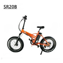 Sr20b Competitive Price 48v 750w Electric Folding Bike 20 Inch Fat Tire E Bike bicicleta electrica e bike bicycle star(China)