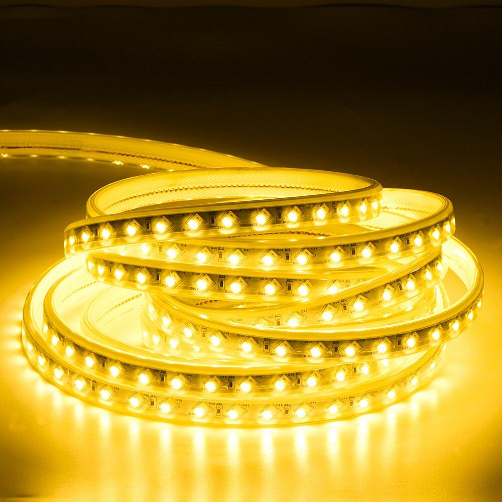 SMD 5050 LED bande 220V Flexible LED bande lumières extérieur étanche IP65 LED bande lumière Dimmable avec télécommande 70m 80m 90m 100m - 4