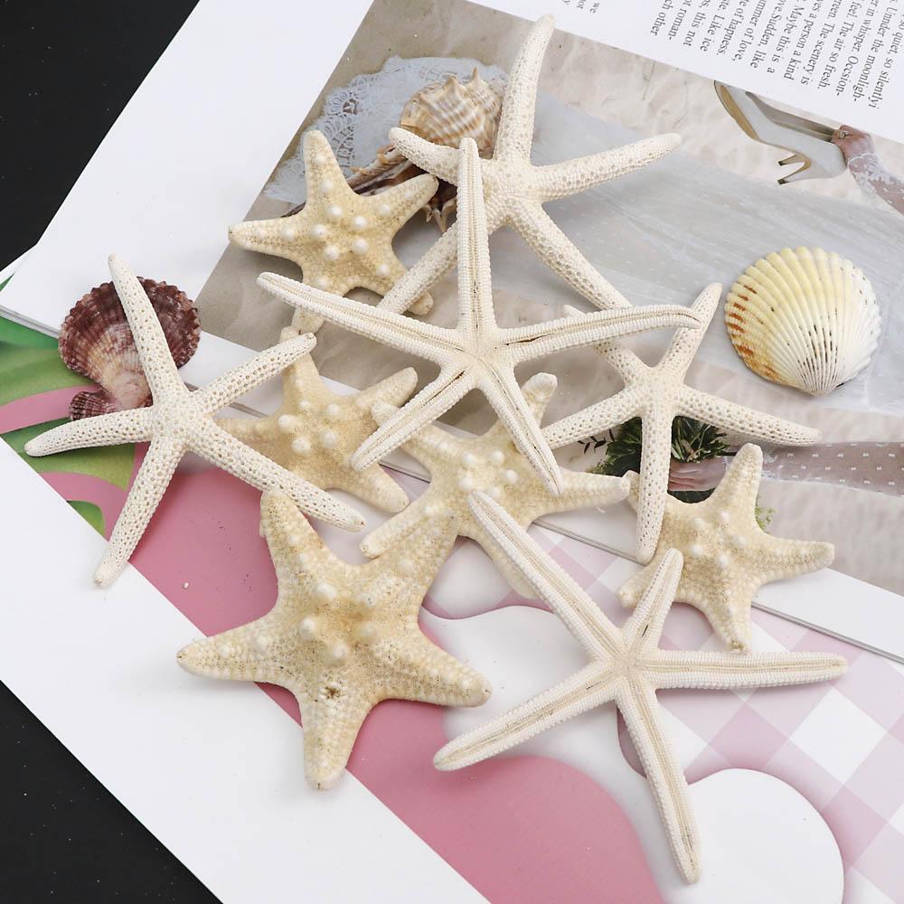 1~6Piece 7~10cm White Natural Finger Starfish Craft Decoration Natural Sea Star DIY Beach Cottage Wedding Decor Party Beige