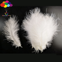 10000 Pcs Turkey Feathers Fluff Imported for Wave Ball Gift Box Dream Catcher Material