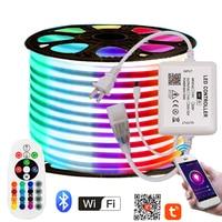 Tira de luces de neón RGB con Control por WIFI y Bluetooth, lámpara Flexible de cuerda de LED neón, color blanco, cálido, 5050, 2835, 220V, para UE, Reino Unido, AU, 110V, EE. UU.