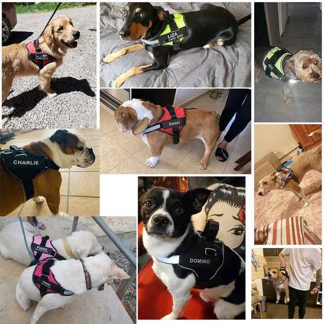 Dog Harness NO PULL Reflective Breathable Adjustable Pet Harness For Dog Vest ID Custom Patch Outdoor Walking Dog Supplies 6