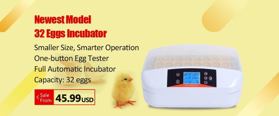 temperatura broker para frango