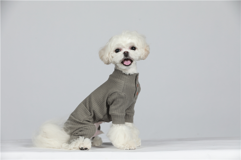 small puppy jumpsuit four legs (35)