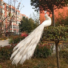 new real life white peacock model foam&feather lovely white peacock bird gift about 80cm XD0070 new simulation white bird model foam
