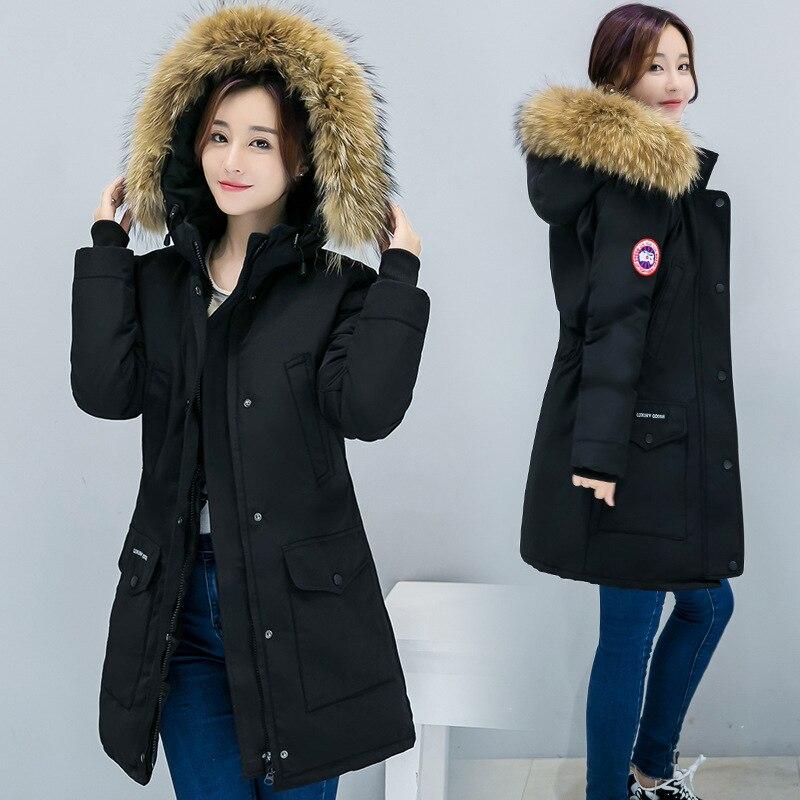 -20 Celsius 2019 Winter Women's Thick Cotton Long Sleeve Coat Korean Slim Large Size Cotton   Parkas   Clothing Winter Long Jacket