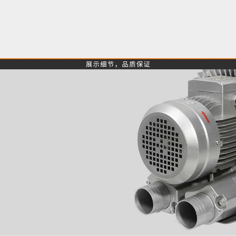 Aohuada Pompa ad aria elettrica ad alta pressione 4500 PSI compressore ad aria pompa ad aria elettrica ad alta pressione PCP pompa gonfiabile 1800 W 220 V