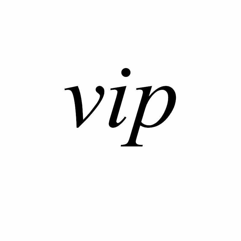 VIP Drone