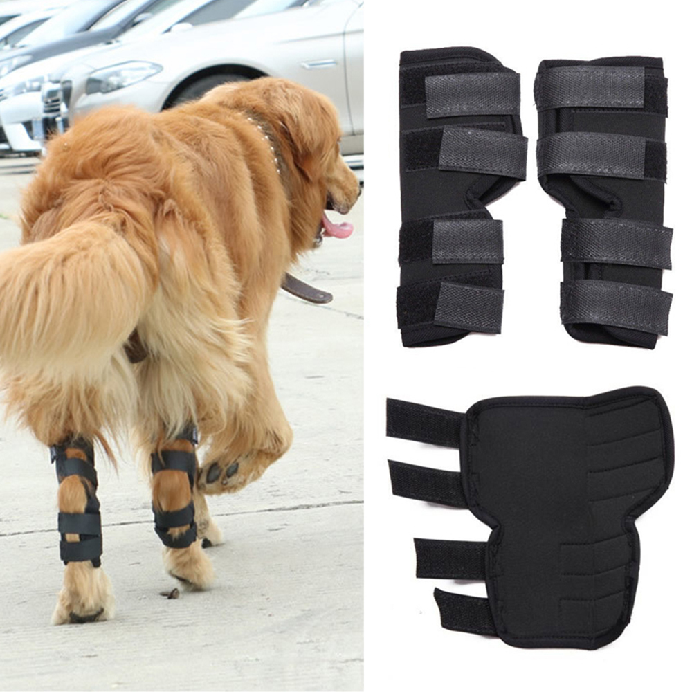 font b Pet b font Knee Pads Dog Support Brace Leg Hock Joint Wrap Breathable