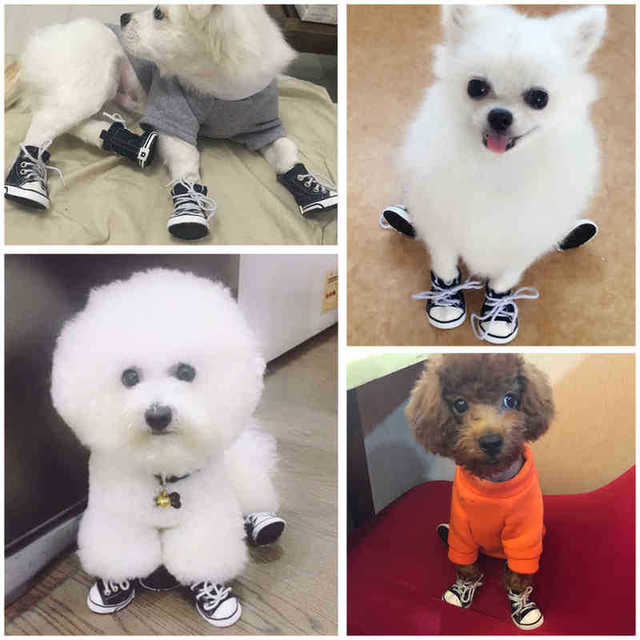 Fashion Dog Shoes Denim Canvas 6