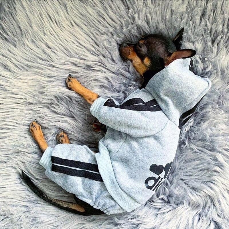 Одежда для домашних животных Французский бульдог щенок костюм для собаки комбинезон Чихуахуа Мопс одежда для домашних собак для маленьких средних собак Щенок наряд|Пальто и куртки для собак|   | АлиЭкспресс