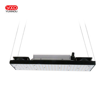 Meanwell Driver 200W Samsung Board LM301H LM301B Full Spectrum Indoor Dimmable LED Grow Lights/Lamps for Veg and Bloom 1