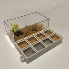 Nid de fourmis en PLA avec impression 3D, nouvelle ferme plate en acrylique, atelier de fourmis, Cages à insectes