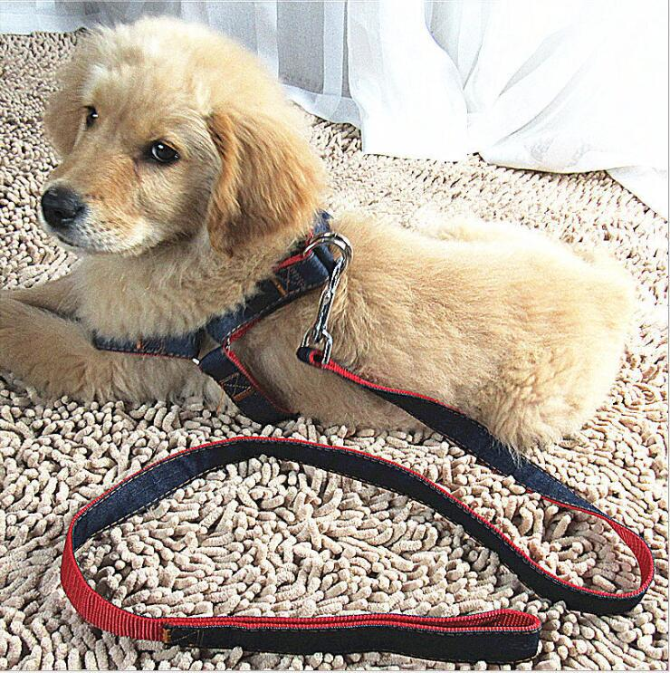 Dog Hand Holding Rope Dog Chain Supplies Vest Style Pet's Chest-back Hand Holding Rope Elasticity Hand Holding Rope For Making