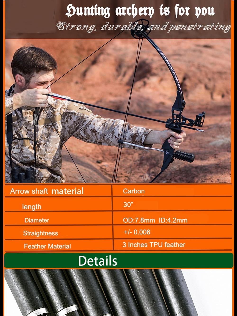 "12x Carbon Arrow 30/"" Spine600 7.8mm Blue Turkey Features Recurvebow Archery Hunt"