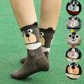 Новое поступление, женские носки с рисунками, цветные Теплые Носки с рисунком, женские хлопковые носки с забавными животными