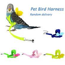 Pet Parrot Bird Harness Leash Flying Rope Straps Outdoor Training Traction For Budgerigar Lovebird Cockatiel Small Birds