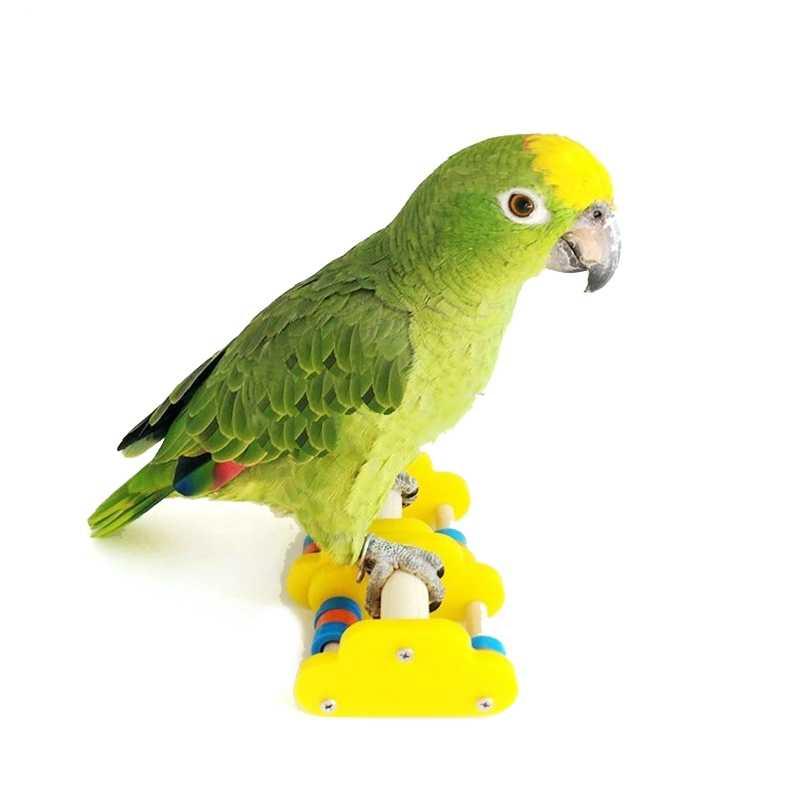 Parrot Underfoot การศึกษาของเล่น Mini สเก็ตบอร์ดการฝึกอบรม Bird Ice สเก็ต Roller สเก็ตของเล่น