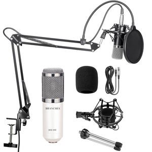 BM-800 Professional Condenser Microphone BM800 Kit:Microphone For Computer+Shock Mount+Foam Cap+Cable As BM 800 Microphone