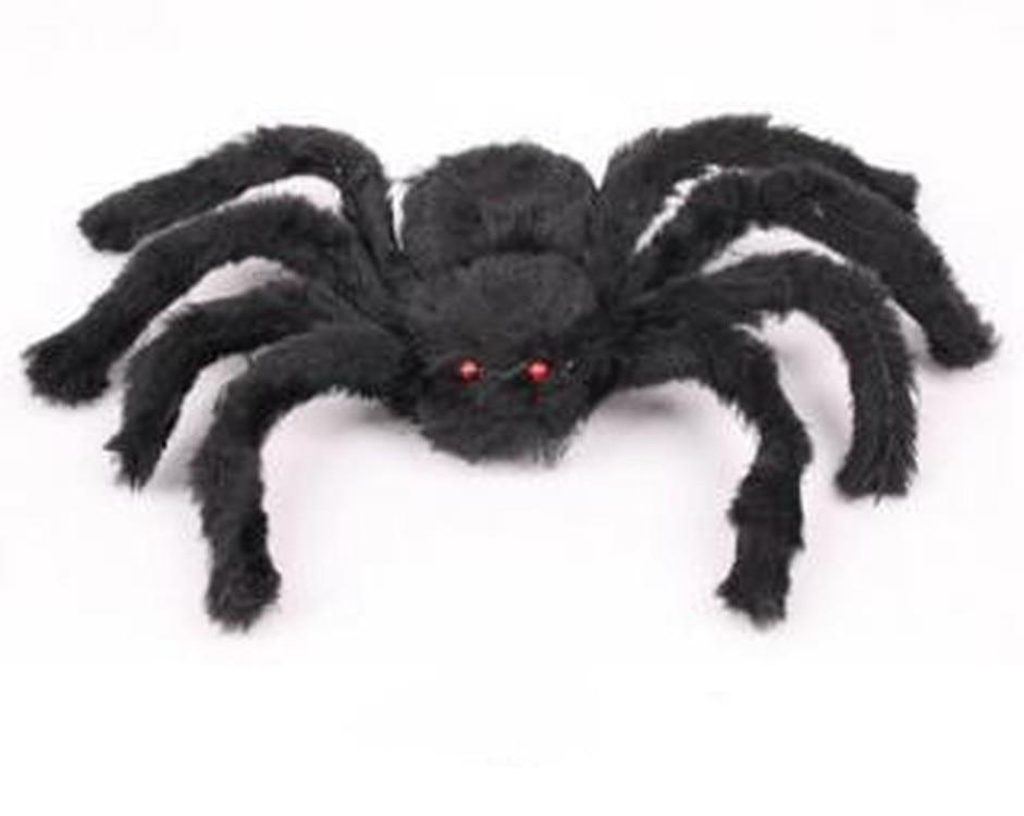 Rüyada Evde Siyah Büyük Örümcek Görmek