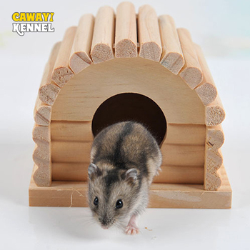 Cute Mini Hamster House