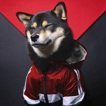 Одежда для домашних животных собак французских бульдогов толстовка