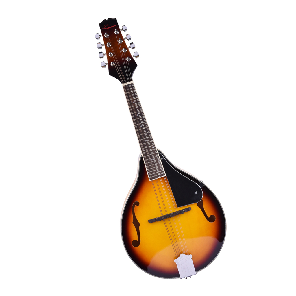 Mandolin Guitar Acoustic Electric Mandolins Musical Instrument Mahogany Wood With Guard Board For Beginner Adults