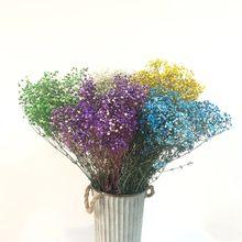 Plantas artificiais gypsophila natural seco flor diy grinaldas e guirlandas para foto shoot adereços primavera decoração do bebê respiração