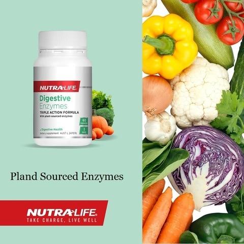 newzealand nutra vida de origem vegetal enzimas digestivas 60 tampas saudavel digestao alivio indigestao bloating