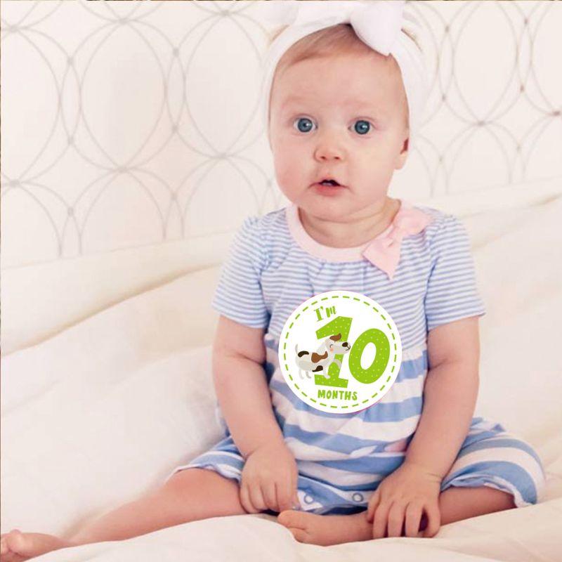Baby Monthly Sticker Baby Belly Stickers Milestone Monthly Age Sticker Unisex