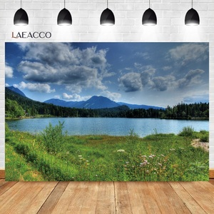 Image 5 - Laeacco Spring Natural Scenery Backgrounds Jungle Forest Wonderland Baby Child Portrait Photography Backdrops Newborn Photocall