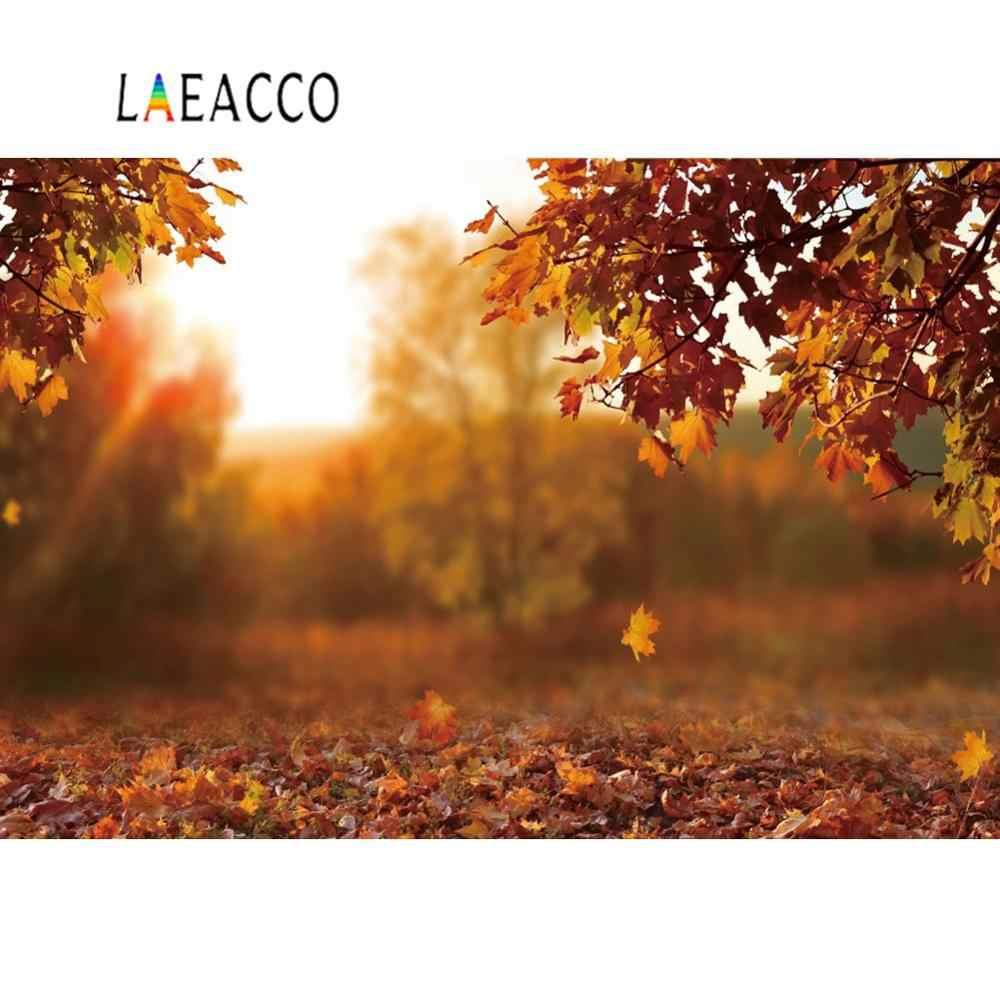 Laeacco Herbst Hintergründe Für Fotografie Laub Maples Licht Bokeh Sonnenschein Baby Neugeborenen Porträt Szene Foto Hintergrund