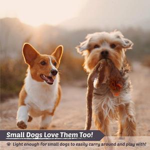 Image 5 - ANSINPARK милые плюшевые игрушки, писк питомца, Вольф, кролик, чучело, собака, жевательный свист, пищащий, обернутый, белка, собака, игрушки p999