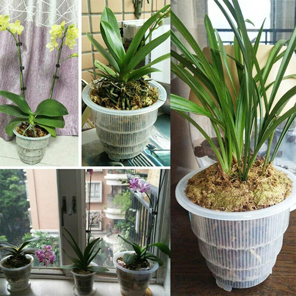 5 Inch Flower Container Planter Durable Fleshy Flower Pot With