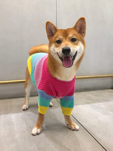 Puppy Dog Rainbow Sweater Law Bucket Bichon Shiba Inu Dog Clothes Fall And Winter Clothes Medium-sized Dog Corgi Puppy Clothes P(China)