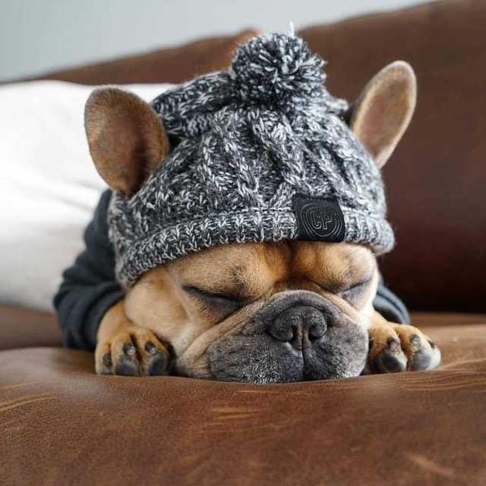 Winter Warm Dog Hats Windproof Knitting French Bulldog Hat for Dogs Hat Fluffy Ball Puppy Pet Hat Accessories