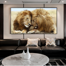 Afrcian Lions Head to Head Wall Art Canvas Posters And Prints Lions Art Canvas Paintings On the Wall Decor Art Pictures Cuadros kitchen theme wall poster and prints various seasonings canvas art paintings on the wall canvas art pictures cuadros decoration