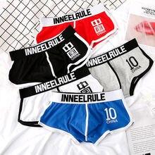 Calsona boxeurs en coton pour hommes, sous vêtements de sport, respirants, multicolores, grande taille, 100kg, m 3xl pièces/lot