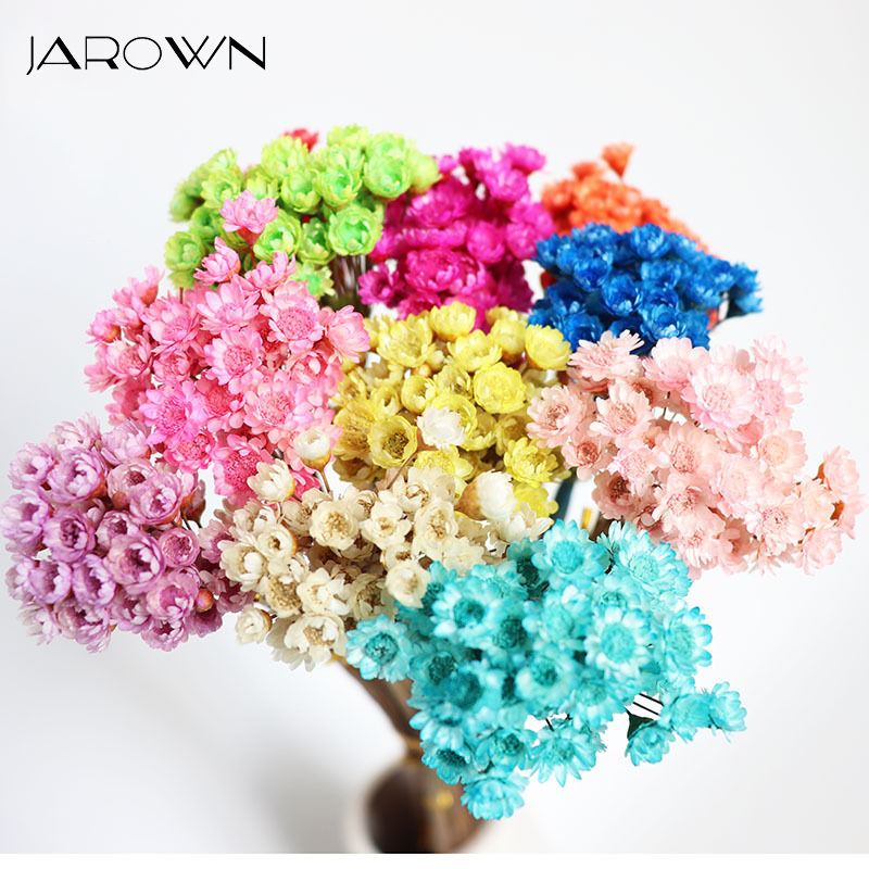 Jarown Dried Flower Natural Little Star Flowers Bouquet Preserved Mini Small Daisy Florist Wedding Diy Material Home Decoration Leather Bag