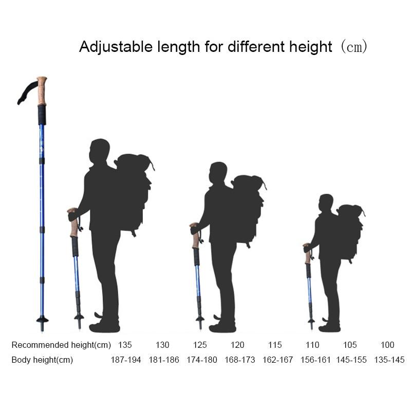 Black 3 Section Télescopique Marche//Randonnée//Trekking Pole-Nordic Walking