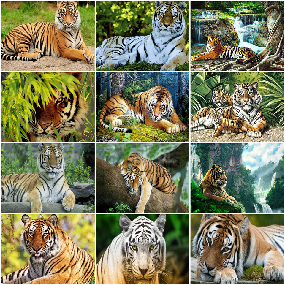 AZQSD Painting By Number Tiger DIY Unframe Acrylic Paint On Canvas Pictures By Numbers Animal Home Decoration For Living Room